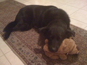 Lucy with teddy bear